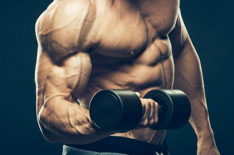 Closeup of a muscular young man lifting dumbbells weights on dar