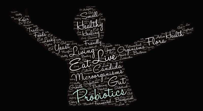 Probiotics word cloud on a black background.