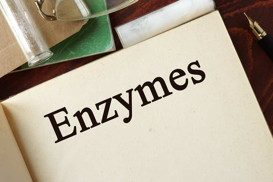 taking enzymes for digestion