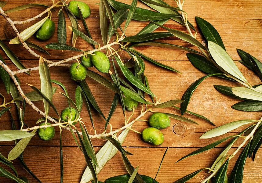 Olives and olive leaves on a wooden table