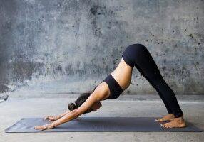 yoga training for beginners