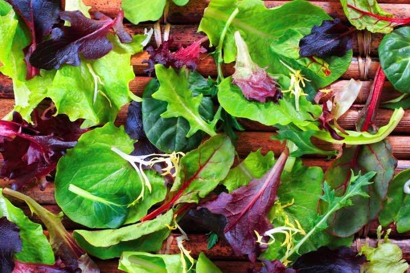 Organic Spring Mix Lettuce