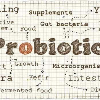 Illustration About Probiotics