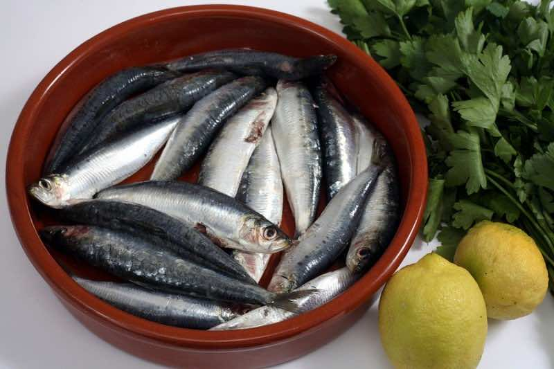 Sardines (pilchards) in a rustic bowl with their heads and innar