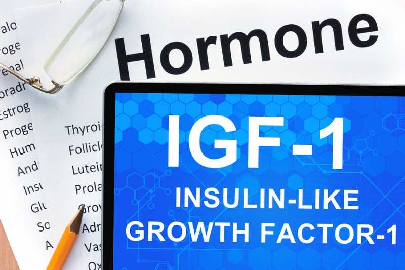 Papers with hormones list and tablet  with words  Insulin-like g