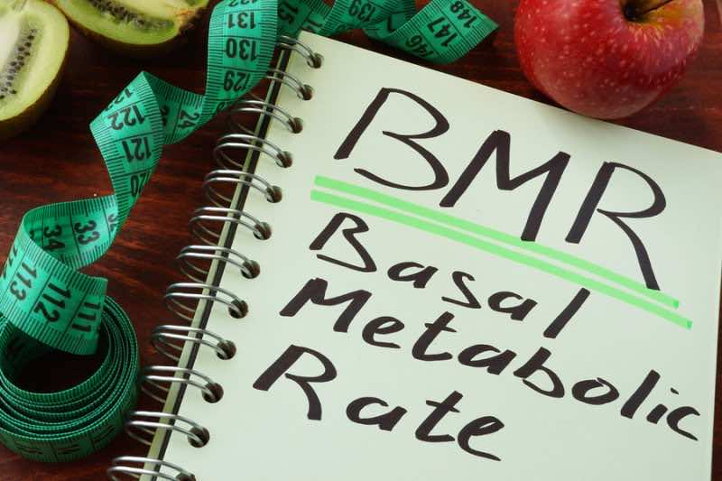 BMR Basal metabolic rate written on a notepad sheet.