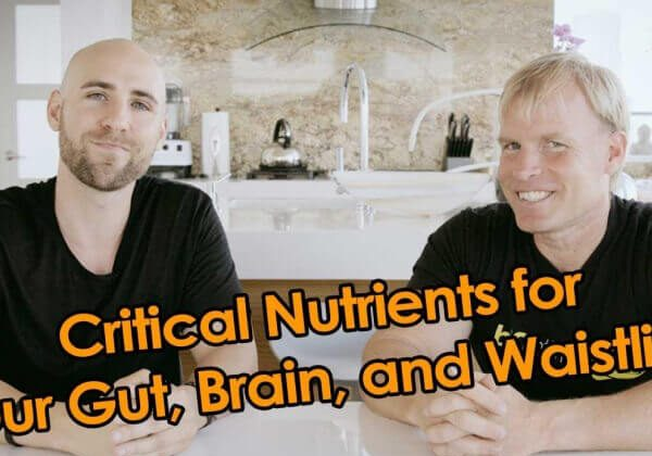 THE 2 CRITICAL NUTRIENTS FOR YOUR GUT, BRAIN, AND WAISTLINE